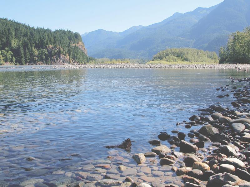 川の水の写真